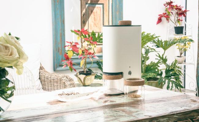 IKAWA Smart Home Coffee Roaster outside